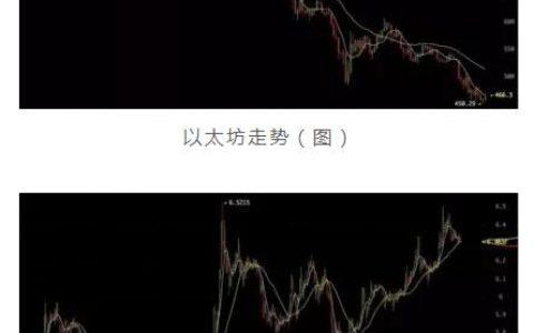 时艳强对话Goh:EOS超级节点竞选更像中国人大代表选举