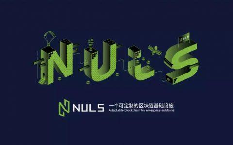 NULS社区章程(讨论稿) NCG 20181207