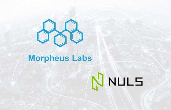 NULS与Morpheus Labs达成进一步合作,双方将共同促进区块链技术的大规模应用落地