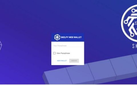 Skelpy比特币问题的解决方案
