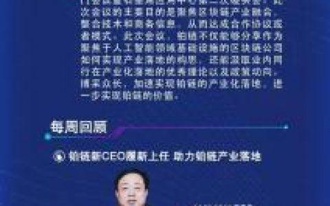 铂链进度周报(2019.3.16-3.22)