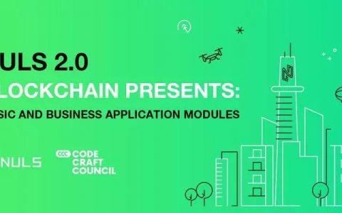 美国开发者研讨会 近30位开发者深度体验NULS ChainBox造链