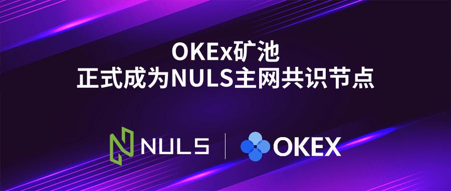 NULS项目11月下半月项目进度报告