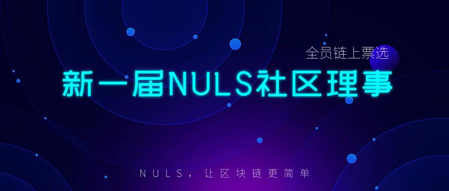 新一届NULS理事会正式完成组建|NULS项目12月下半月进度简报
