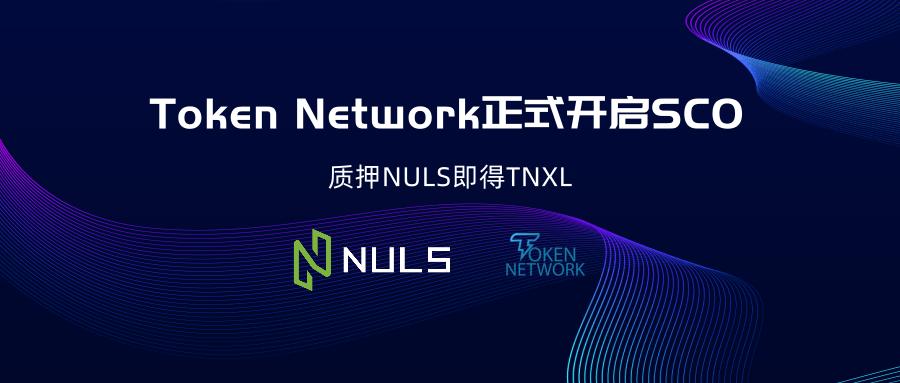 """为电商和零售业服务的""""以太坊""""Token Network 正式发起SCO"""