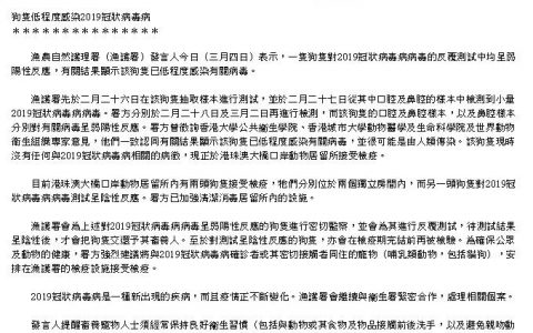 众志成城,共抗疫情 ▏香港确诊狗感染新冠病毒,会传染给人吗?