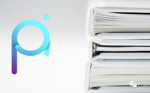 欧洲工商管理学院 INSEAD 发表 PAI 的案例研究