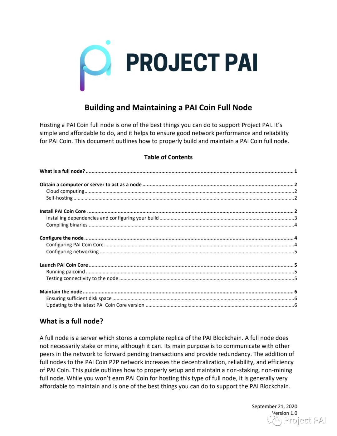 建立和维护PAI币完整节点