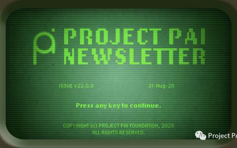 Project PAI 项目进度- 2020年8月31日