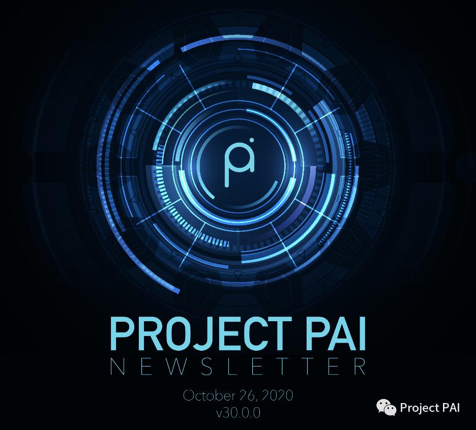 Project PAI 项目进度- 2020年10月26日