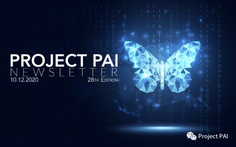 Project PAI 项目进度- 2020年10月12日