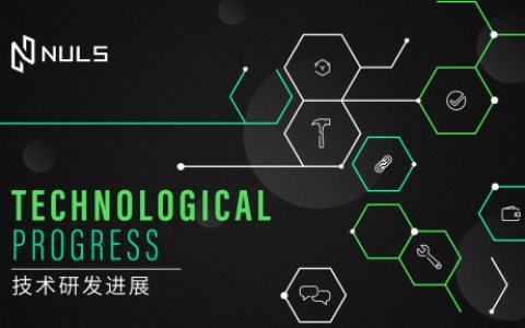 NULS社区2021年2月下半月简报   Nabox 生态插件钱包开启内测