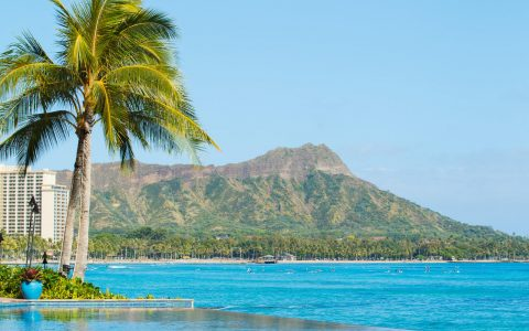 """加密货币的""""天堂乐园"""" ?2021年美国夏威夷对加密货币的需求增长超 687%"""